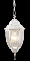 Уличный подвесной ARTE LAMP A3151SO-1WG PEGASUS 1xE27 60W 220V IP44